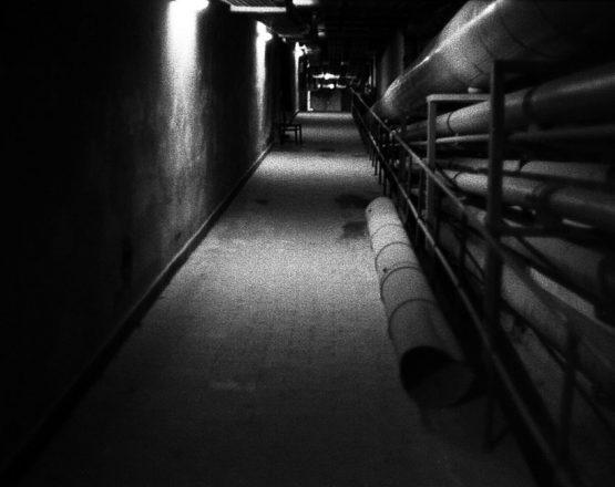 Bunker007