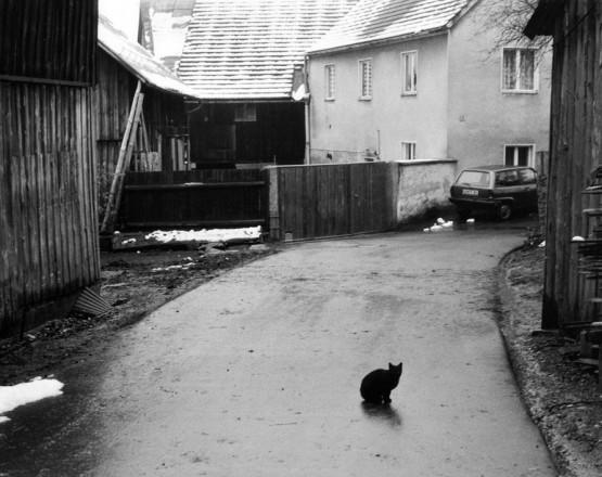 Waldau_1990_012